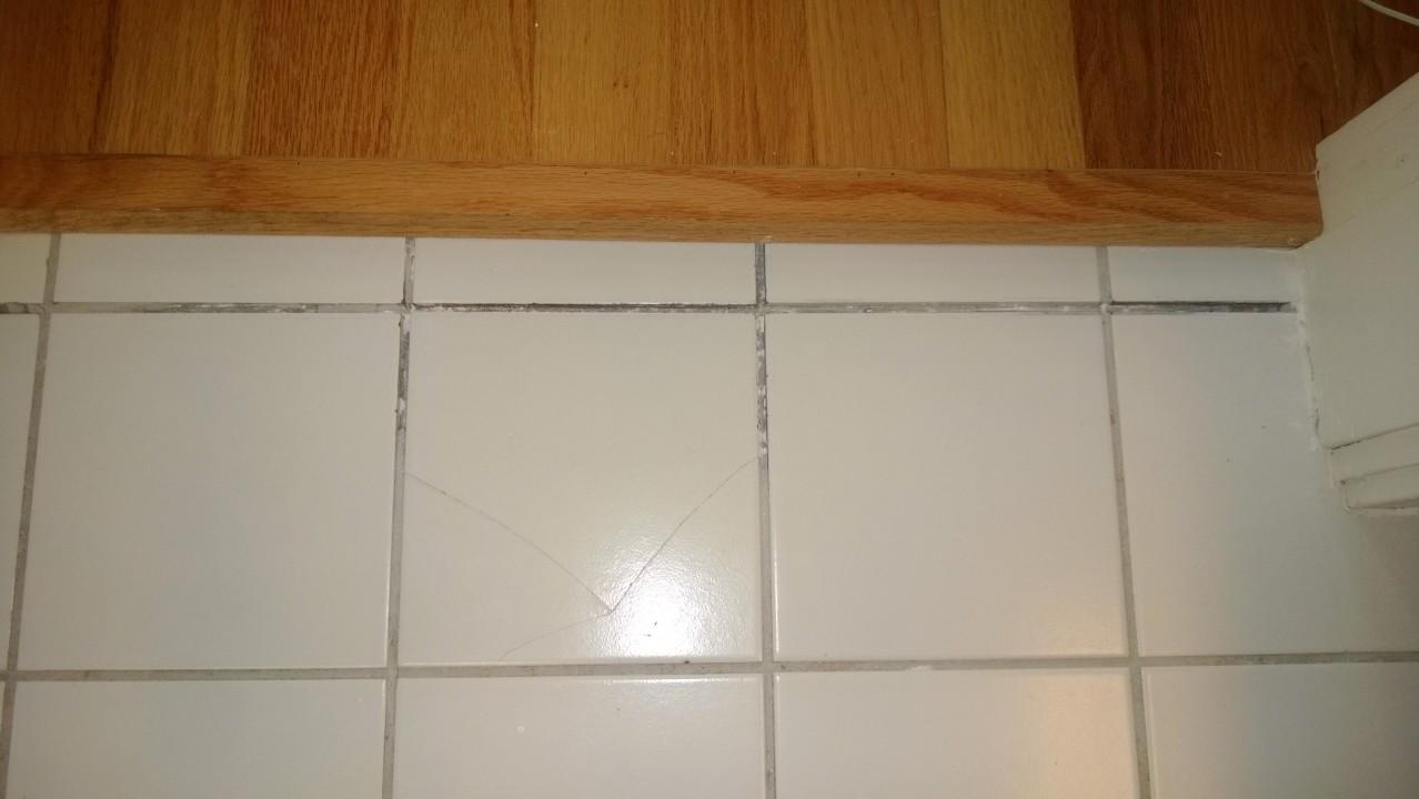 Regrouting Bathroom Tile  ORBITTED BY NINE DARK MOONS