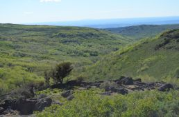 The view of from the Steens Loop Road just before Jackman Park.