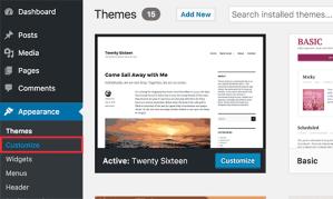 wordpress customize css