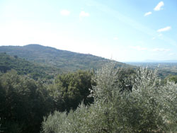 tuscanview2