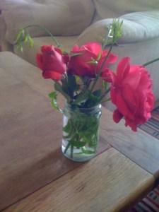 Roses to make me feel better
