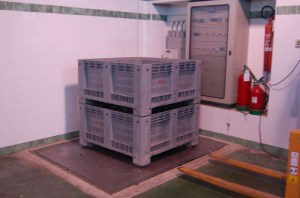 Weighing in...one of these big boxes holds about 250k of fruit