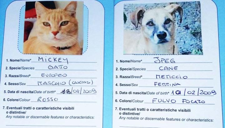 Pet Passports Please…?