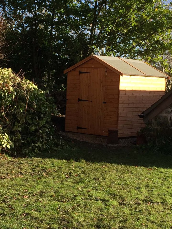 thenewshed