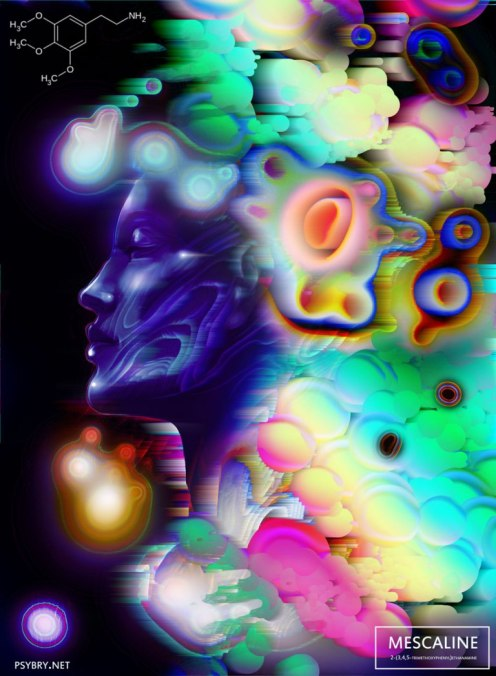 day17_mescaline