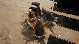 Non si può proprio dire che abbia tagliato il traguardo, questo corridore della Mud Day Race...
