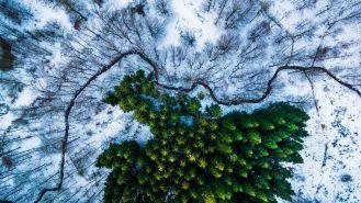 """Uno scorcio del paesaggio danese che ha vinto il primo posto nella categoria """"Nature and Wildlife"""""""