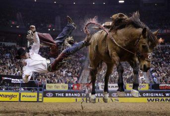 Anche i campioni del National Finals Rodeo di Las Vegas possono cadere.