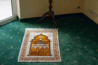 ueber-den-gruenen-teppichboden