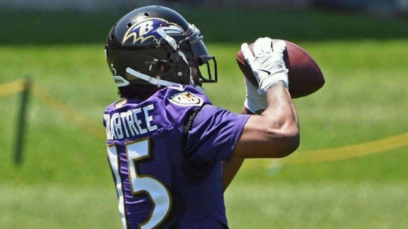 Ravens' One To Watch: Michael Crabtree