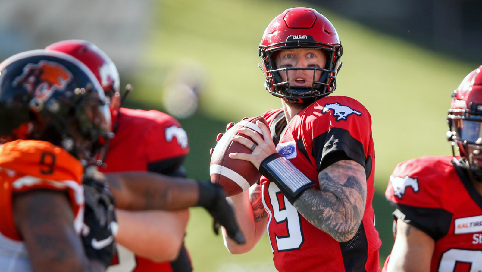 Calgary Stampeders: The team for you?