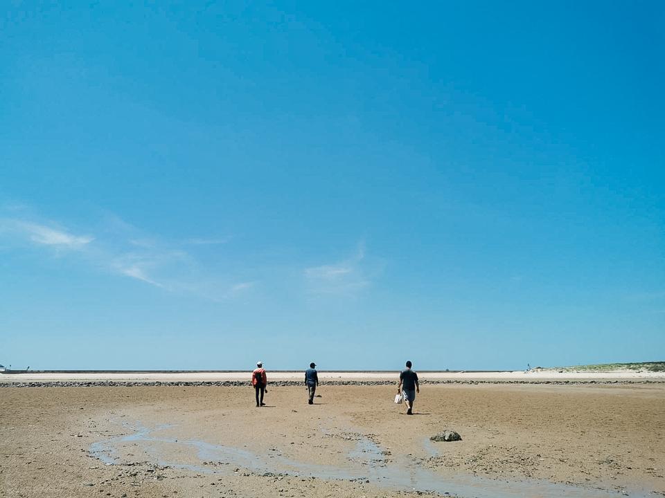 礁岩採拓-遊走潮間帶