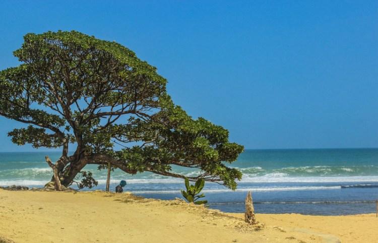 Pantai Pok Tunggal Gunungkidul