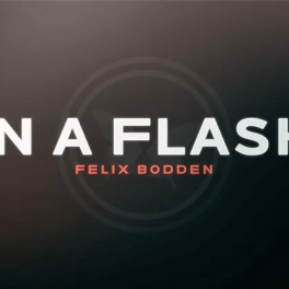Review: In a Flash by Felix Bodden