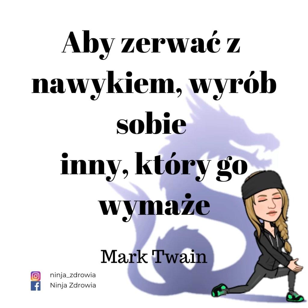 Mark Twain - Motywacja - motywacja