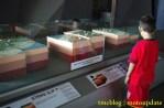 Museum_tsunami#_0096