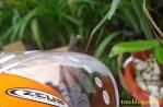 zeus_helmet_#_0039