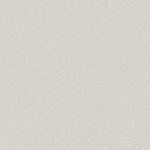 optin-texture-bedge_grunge