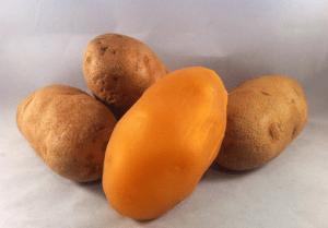 Frisky Beast Rowdy Russet silicone potato