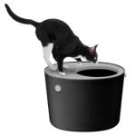 猫トイレ おしゃれと評判 アイリスオーヤマの上から猫トイレの口コミ