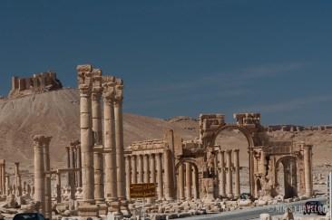 Palmyra-12