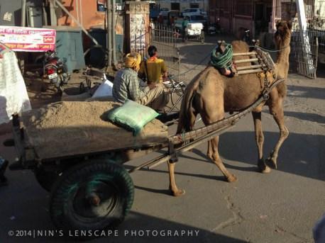 20140315-INDIA-0075