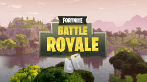 Fortnite Battle-Royale