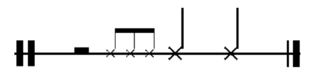 Timbalae-Roll