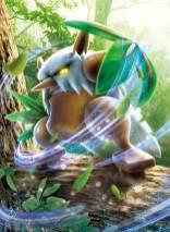 pokemon-tcg-3dcg-how-9