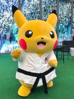 karate-pikachu-aug42018-1