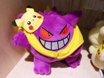 pokecen-pikachu-eevee-fanclub-photo-6