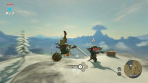 Zelda_E3_11am_SCRN092