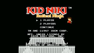 Kid Niki (NES) Game Hub