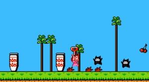 Exclusive Super Mario Bros. 2 Details & Screens