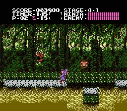 Ninja-Gaiden-8