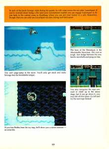 Game Player's Encyclopedia of Nintendo Games page 109