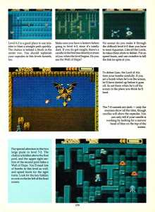Game Player's Encyclopedia of Nintendo Games page 179