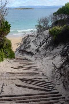 Walkway to Hazards Beach, Freycinet
