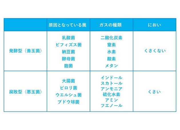 発酵型と腐敗型のおならの説明表