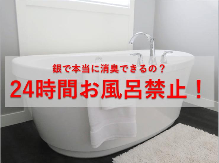 本当に銀のチカラで消臭ってできるの?24時間お風呂に入らず試してみた!(資生堂Ag+シリーズをレビュー)