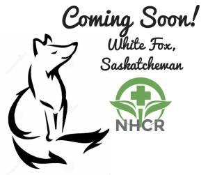 Natural Healing Clinic White Fox