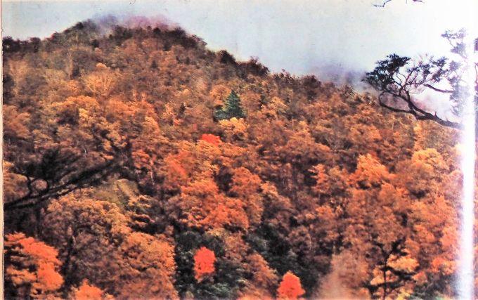 Sciences et voyages Japon Nikko