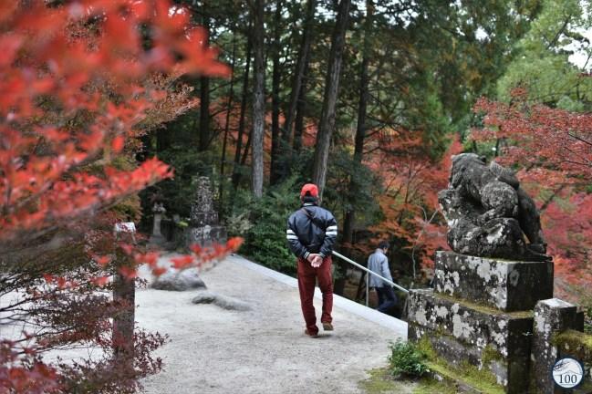 Kunenan garden - Kyushu