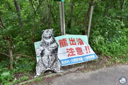 panneau ours - Hotokegaura