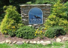 Raven_Ridge_3