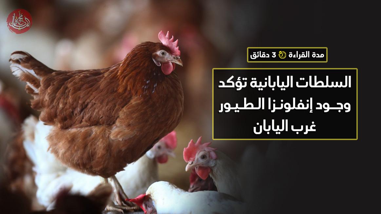 السلطات اليابانية تؤكد وجود إنفلونزا الطيور غرب اليابان