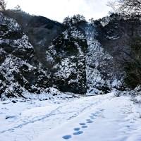 ひと足お先にプラモ納涼祭開催!! 冬季迷彩塗装で涼しさゲットだぜ!!!