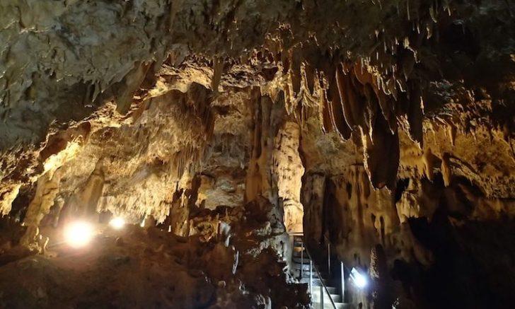 石垣島鍾乳洞の内部
