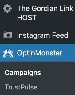 OptinMonster-Announcement bar-WordPress
