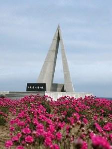 宗谷岬 アルメリアの花 05'6
